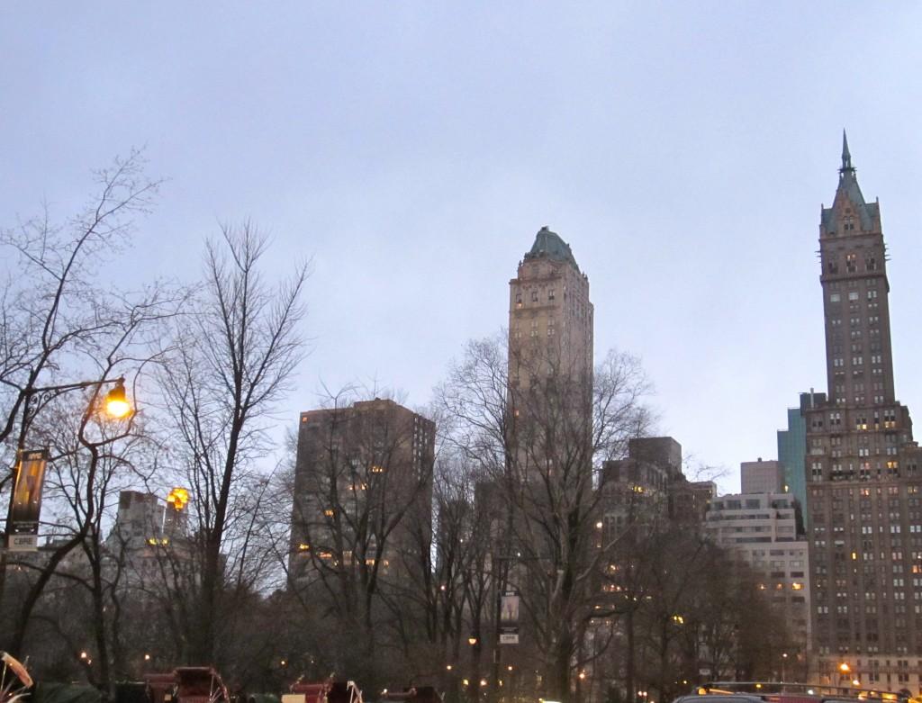 Central Park Buildings