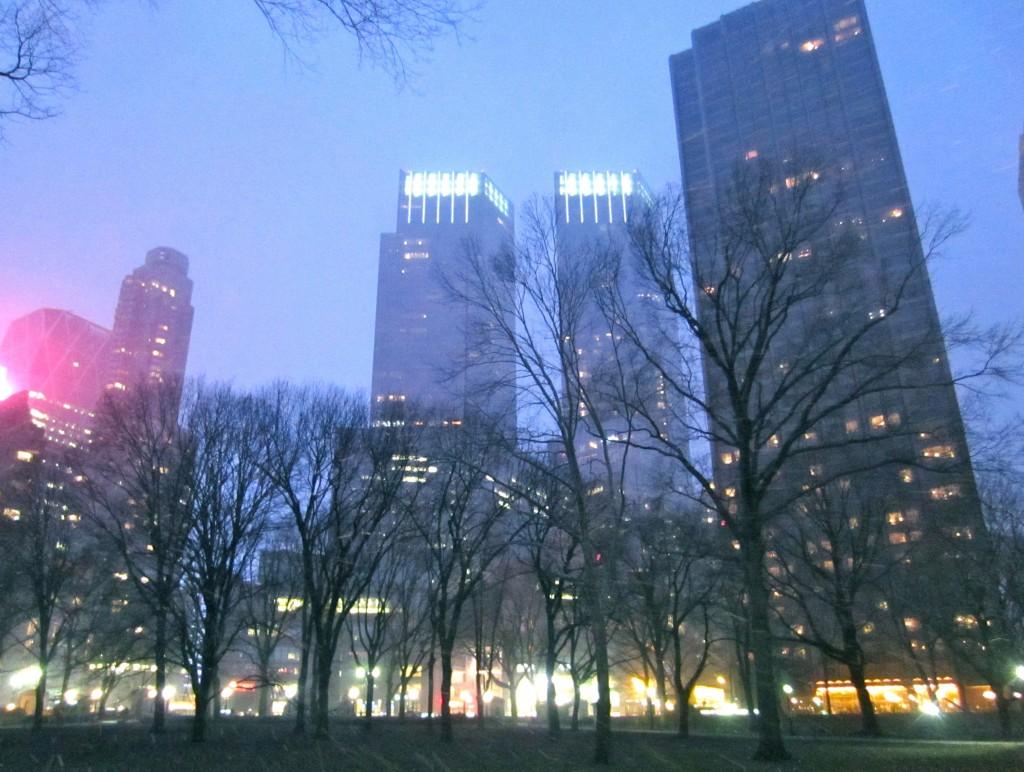 New York City Central Park Snow