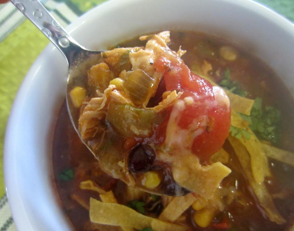 Chicken Tortilla Soup bite