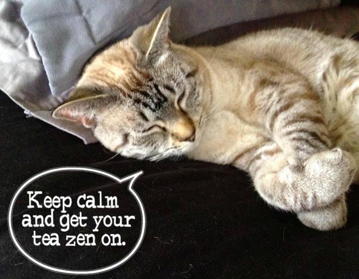 Zen Cat Cartoon