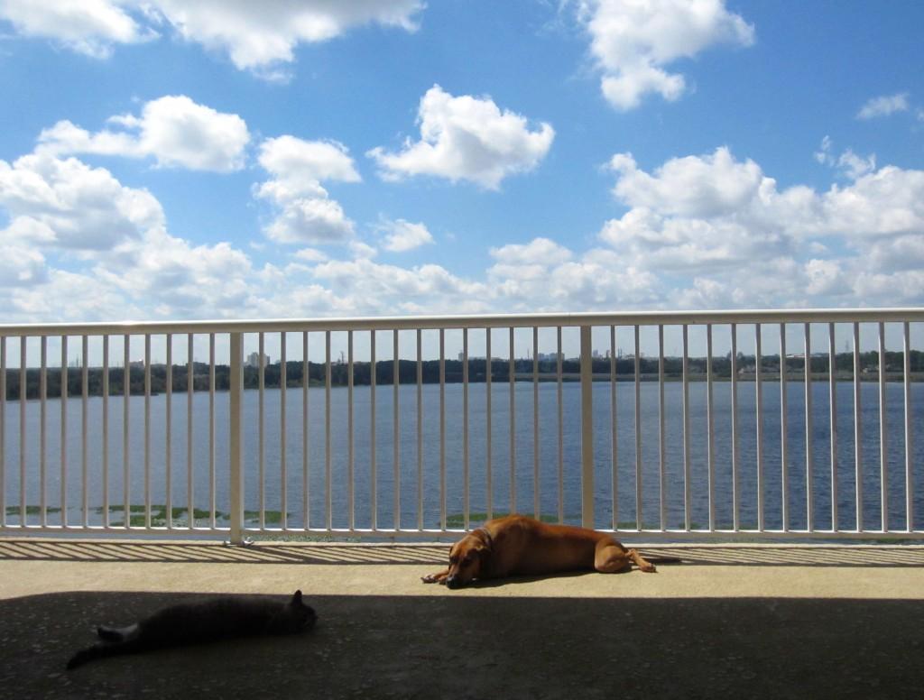 Enjoying our balcony view
