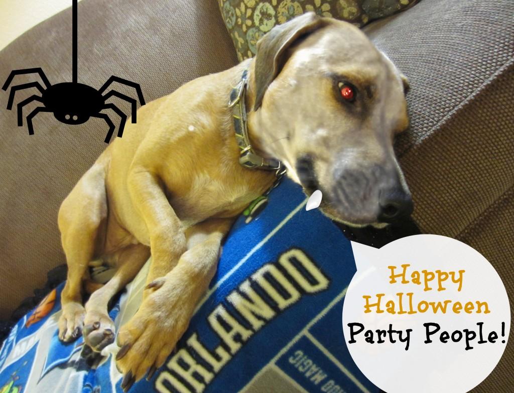Roadie says Happy Halloween
