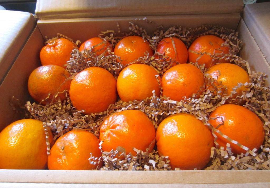 Florida Oranges gift basket