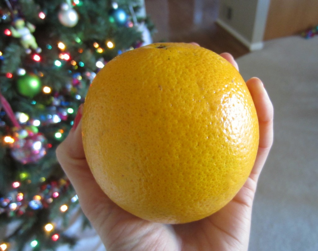 Florida navel orange