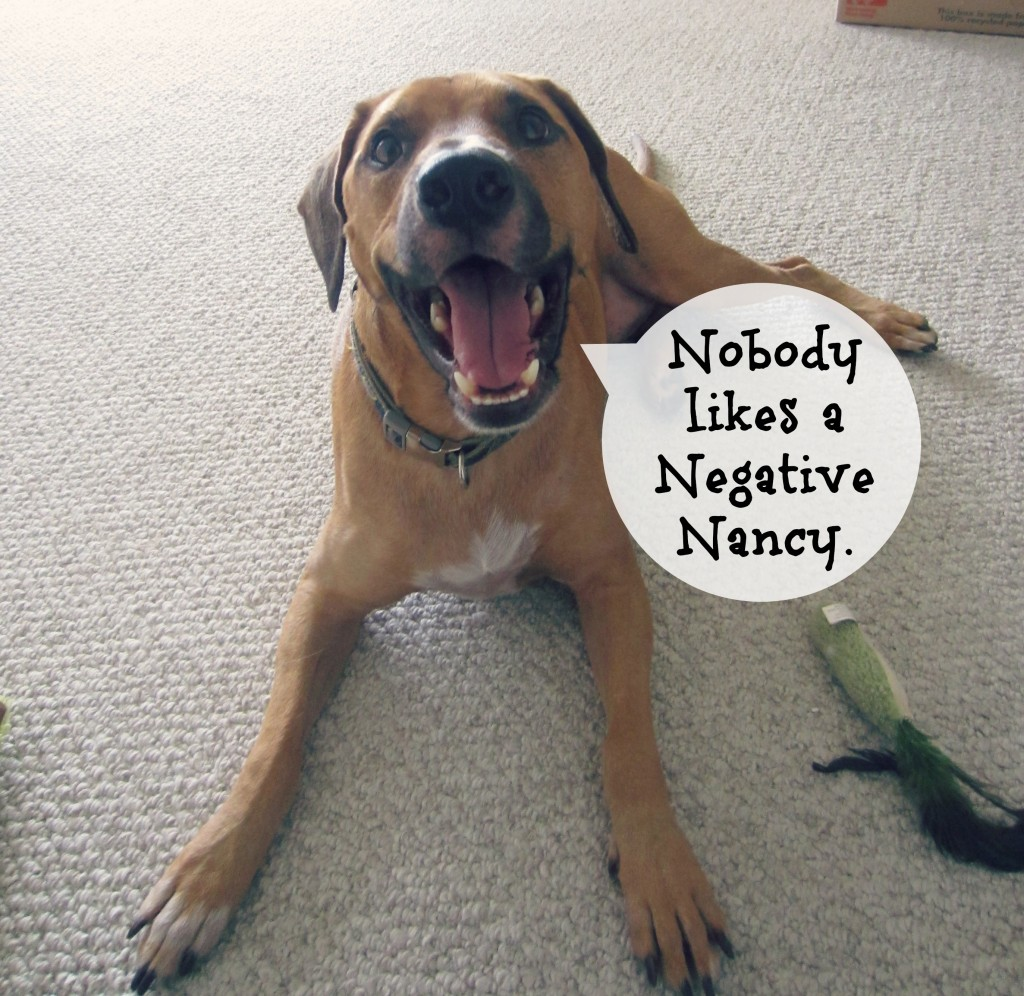 Roadie says be positive