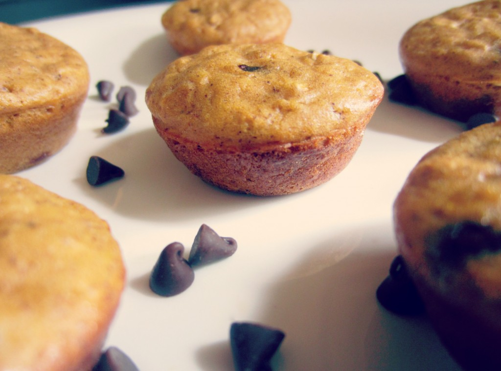 pumpkin muffin recipe with protein powder