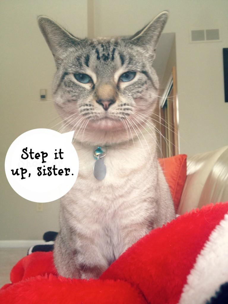 Aspen says step it up