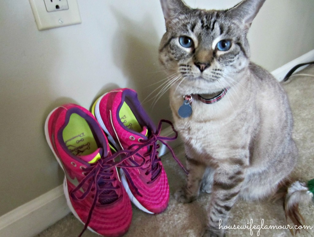 Cats like Mizuno Waves