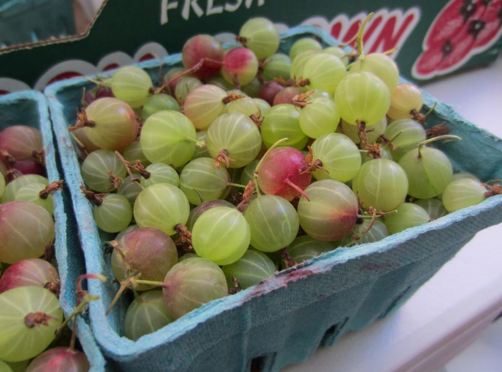Portland Farmers Market Gooseberries