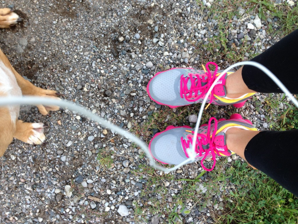 running trails with dog