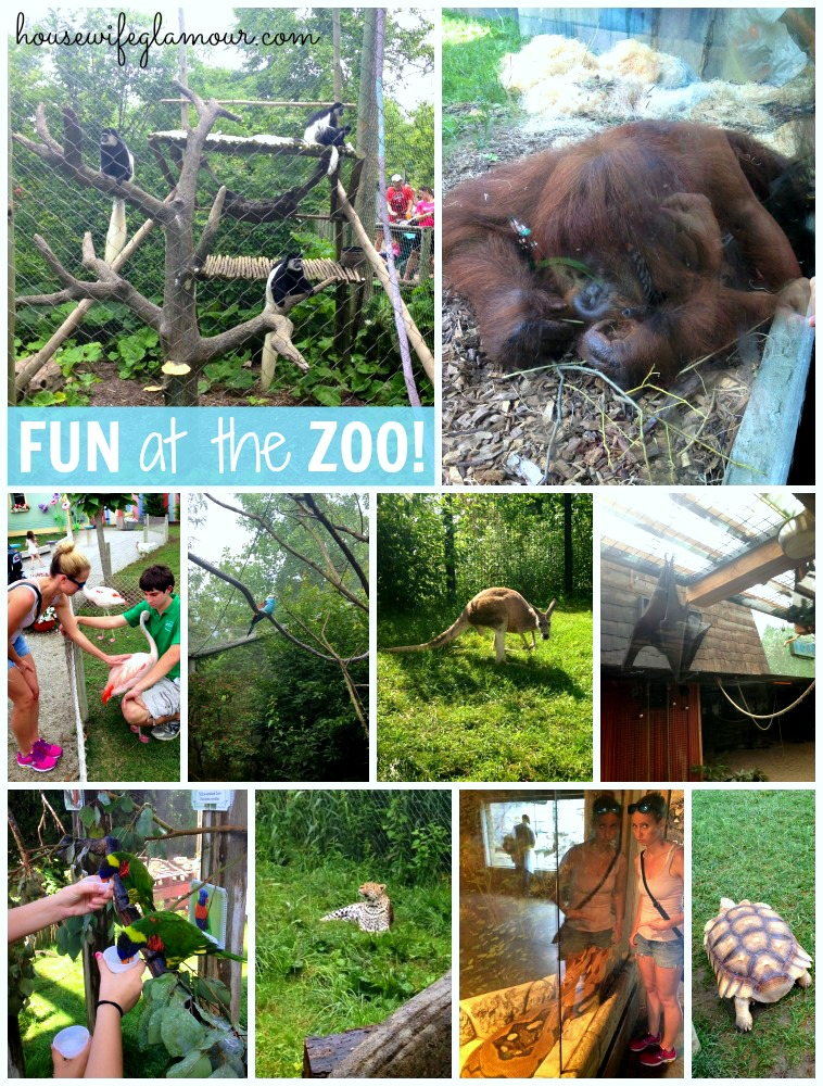 visiting the Columbus Zoo 201