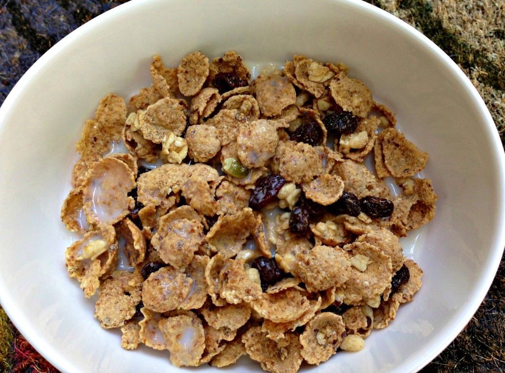 Nature's Path Pumpkin Flax Cereal