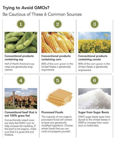 how to avoid GMO guide