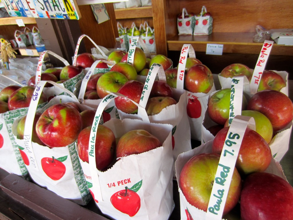 Franklin Cider Mill Apples