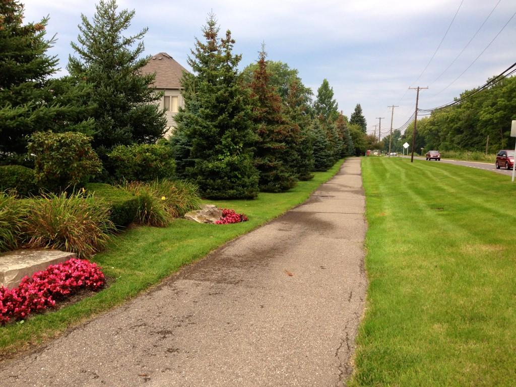 neighborhood run