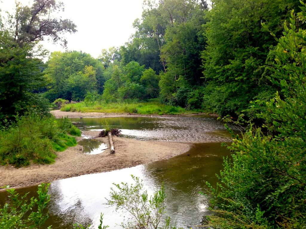 trail stream