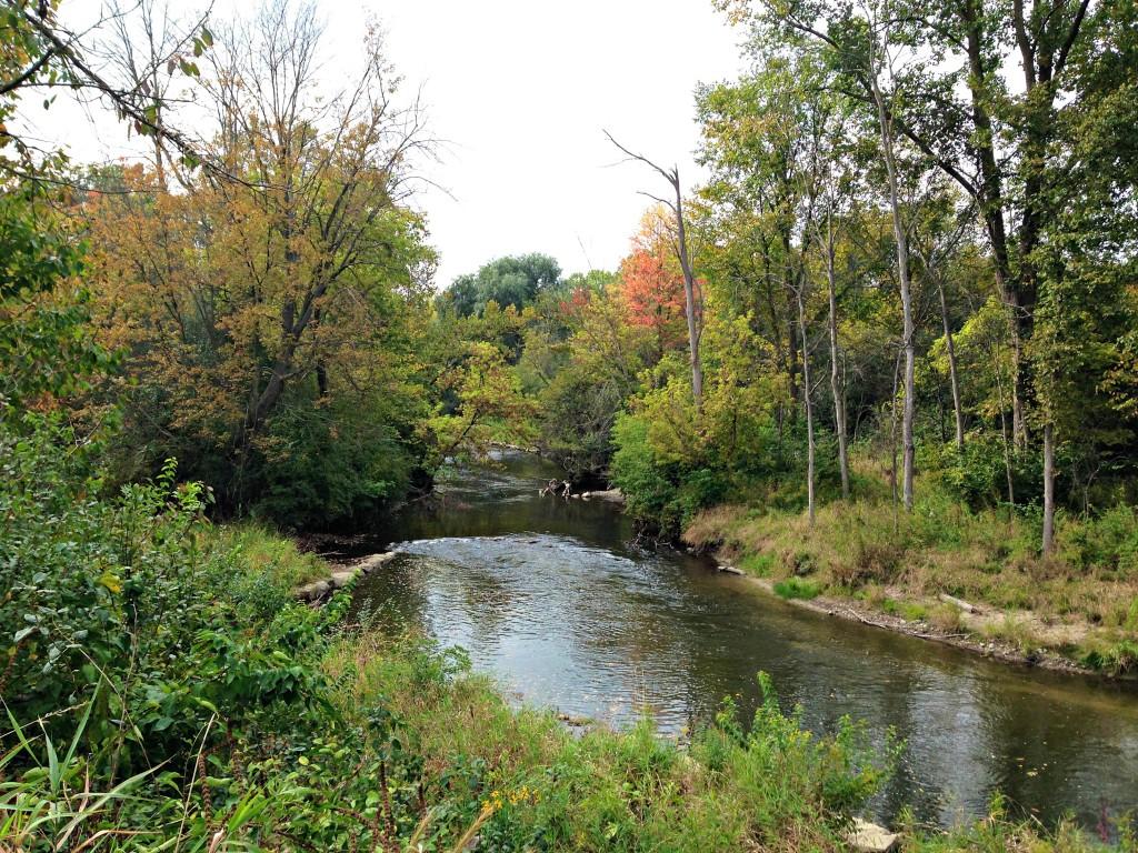 Fall run trail river