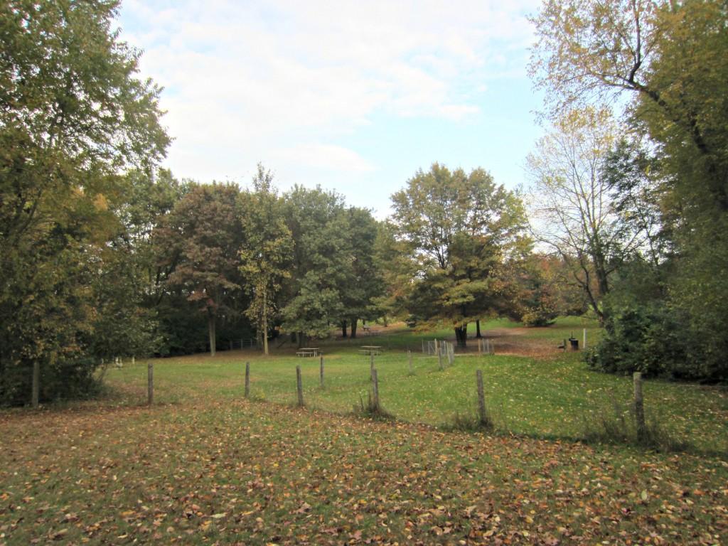 Orion Oaks bark park