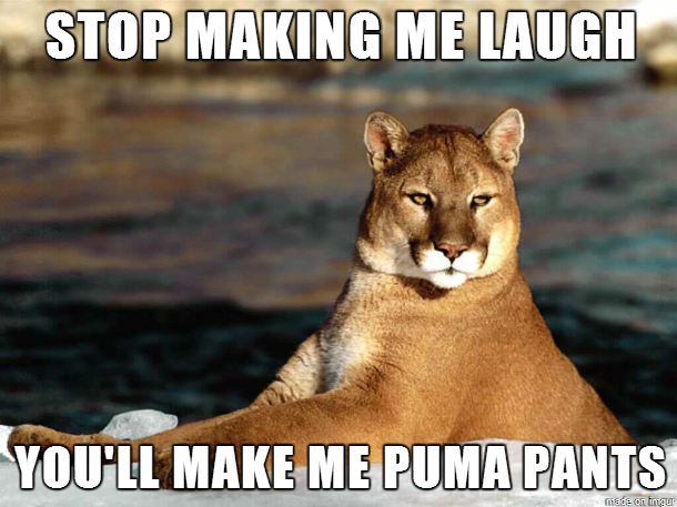 Stop-Making-Me-Laugh-Youll-Make-Me-Puma-Pants-Meme