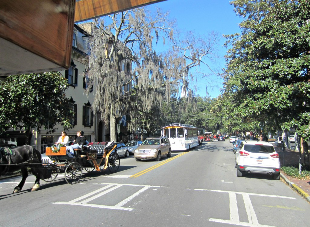 savannah slow ride bike tour