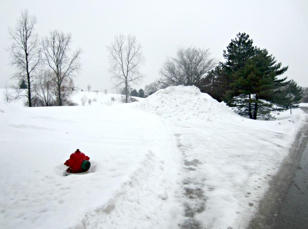 heavy snowfall michigan