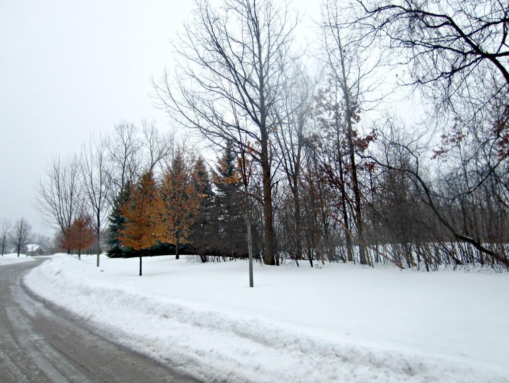 heavy snowfall michigan winter 2014
