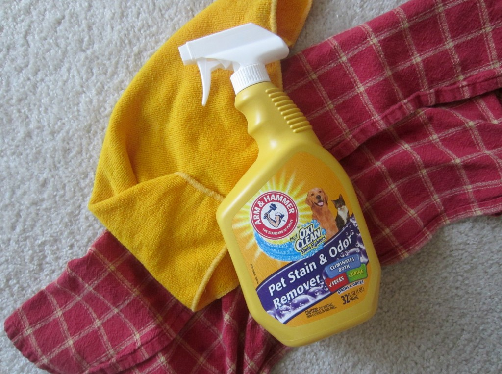 arm & hammer pet stain & odor remover with oxi clean