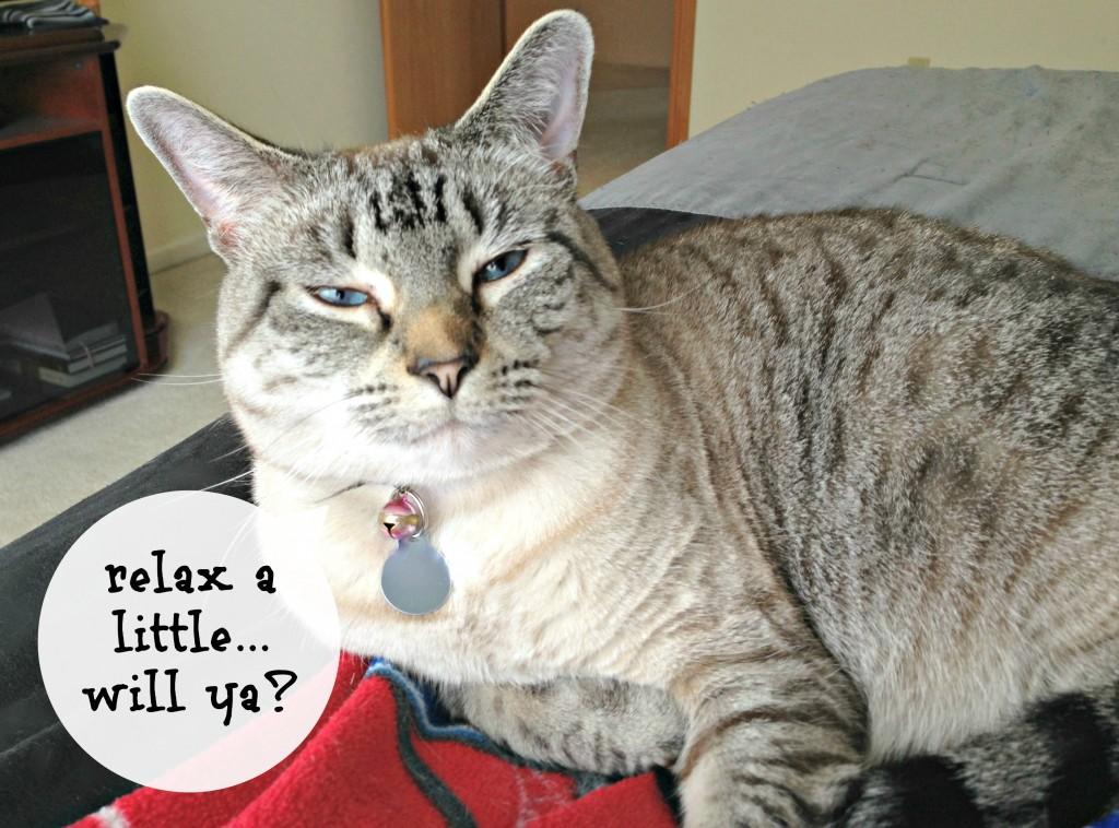 aspen says relax
