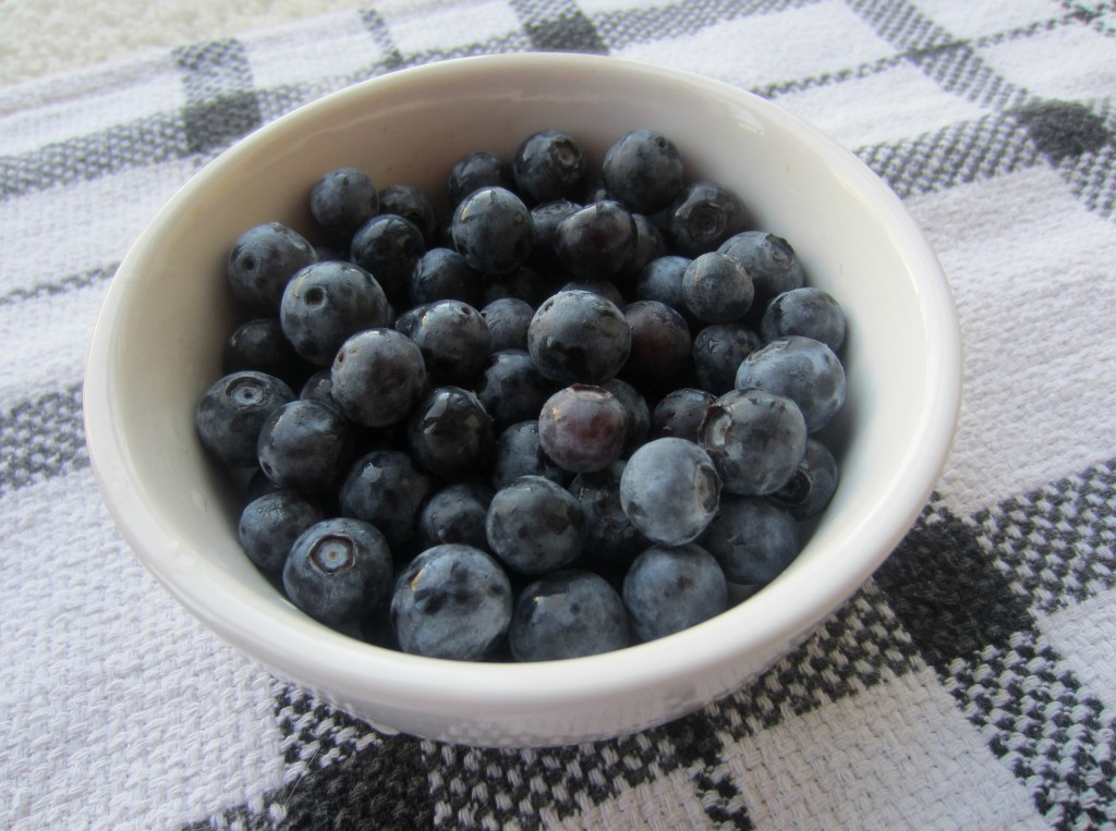 fresh blueberries healthy snack