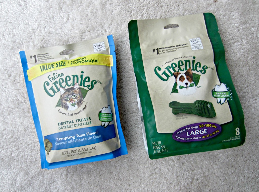 cat and dog greenies dental treats