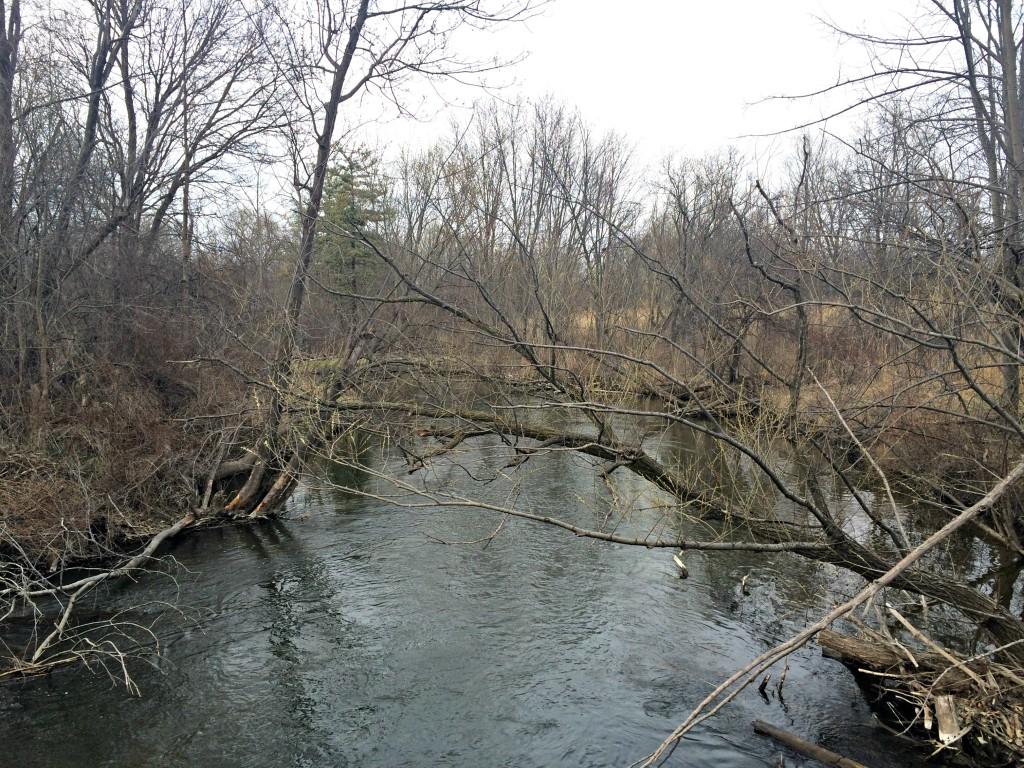 running outside river scenery