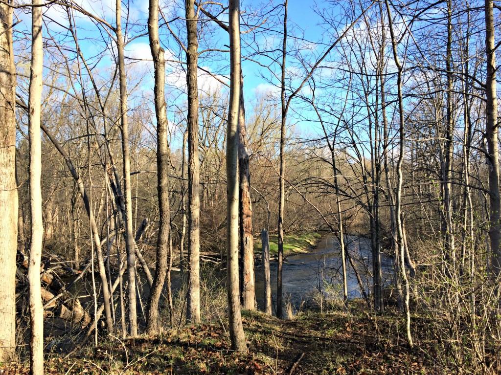 trail run overlook