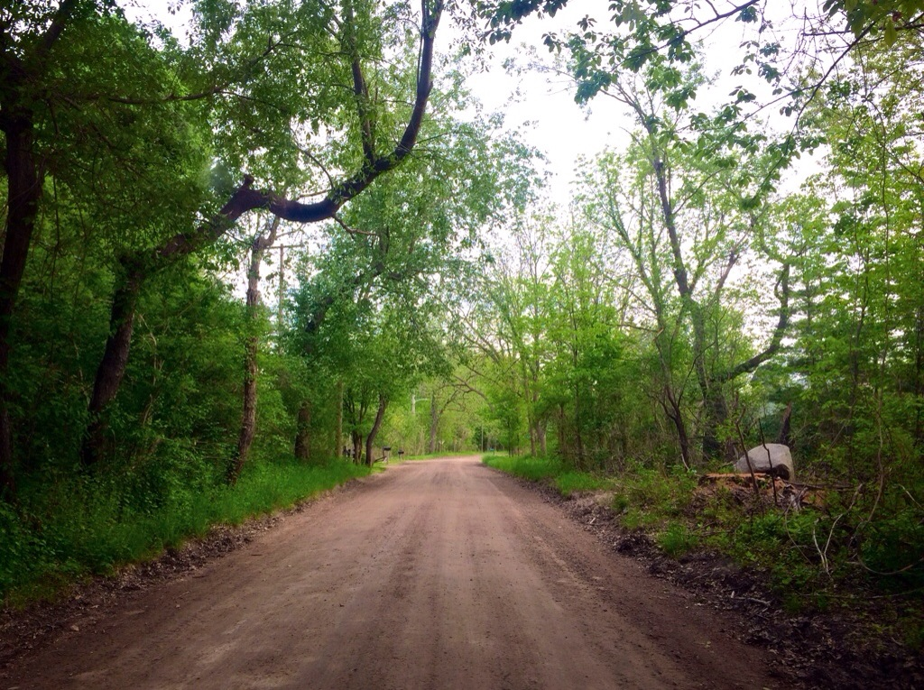 trail by eminems house