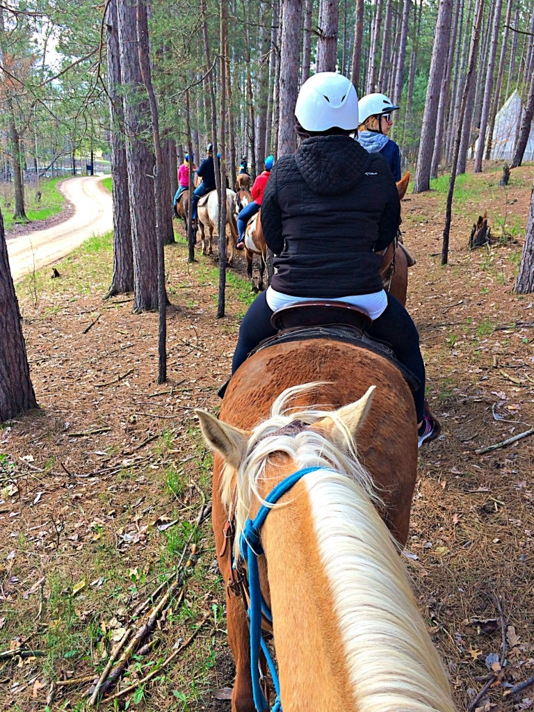 horseback riding at spring hill