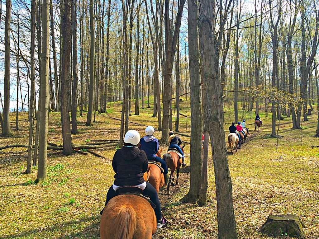 spring hill horseback riding group