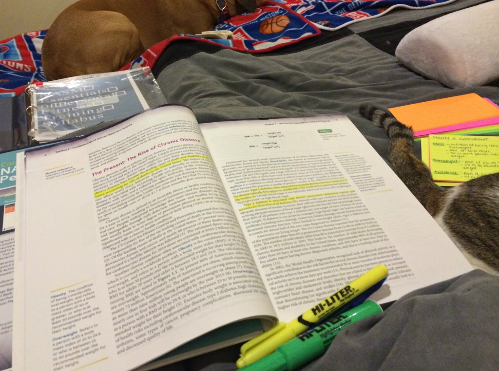 studying for NASM in bed