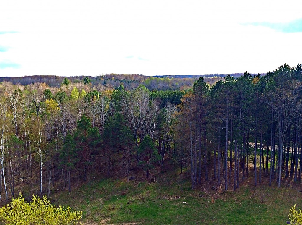 zip lining view spring hill