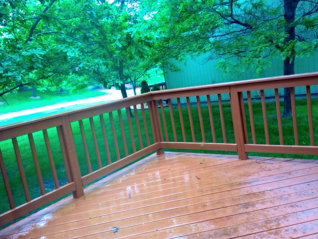 rainy backyard
