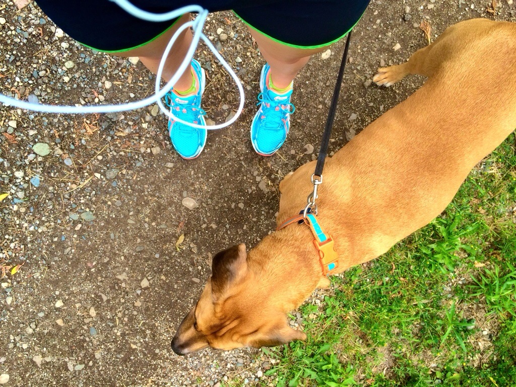 running the trails with roadie