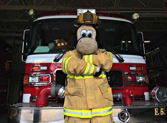 HOOPER the Fireman jpg