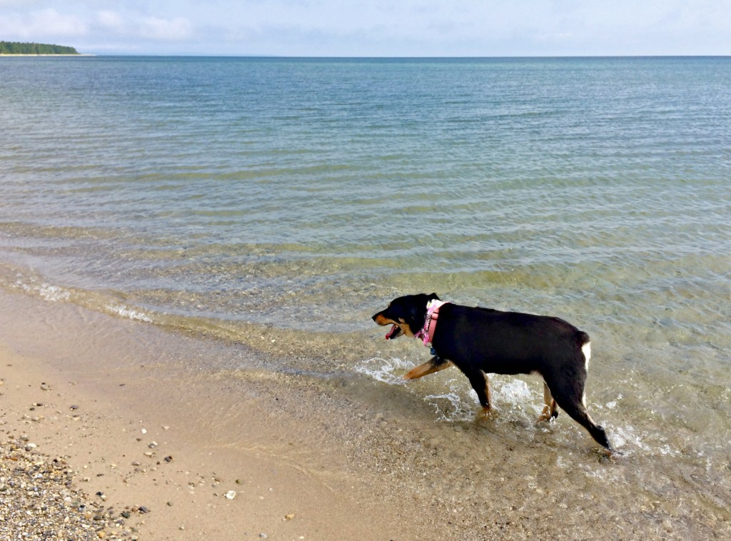 macy at sleeping bear dunes beach