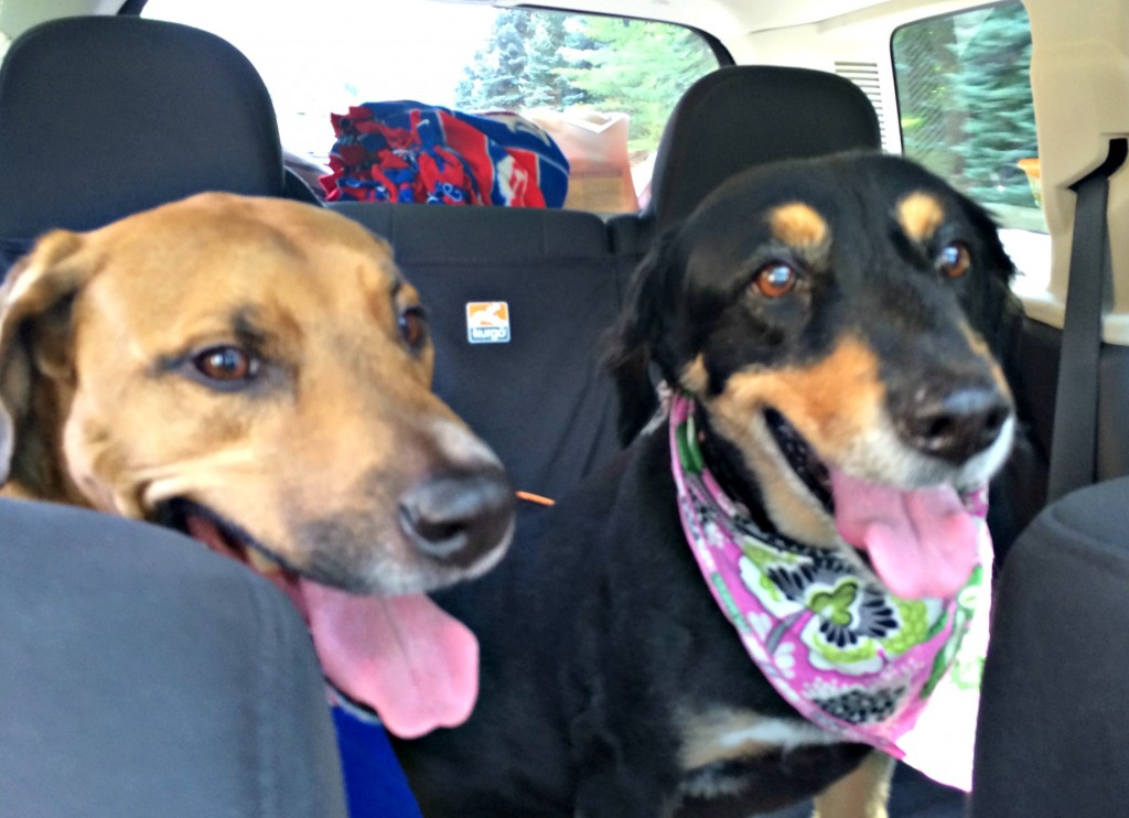 raodie and macy in the car