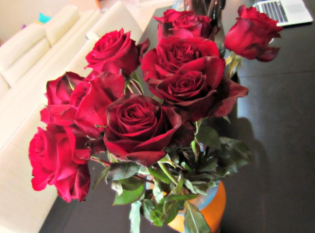 fresh dozen roses