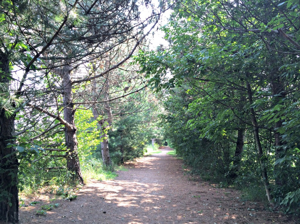 orion oaks dog park trails.jpg