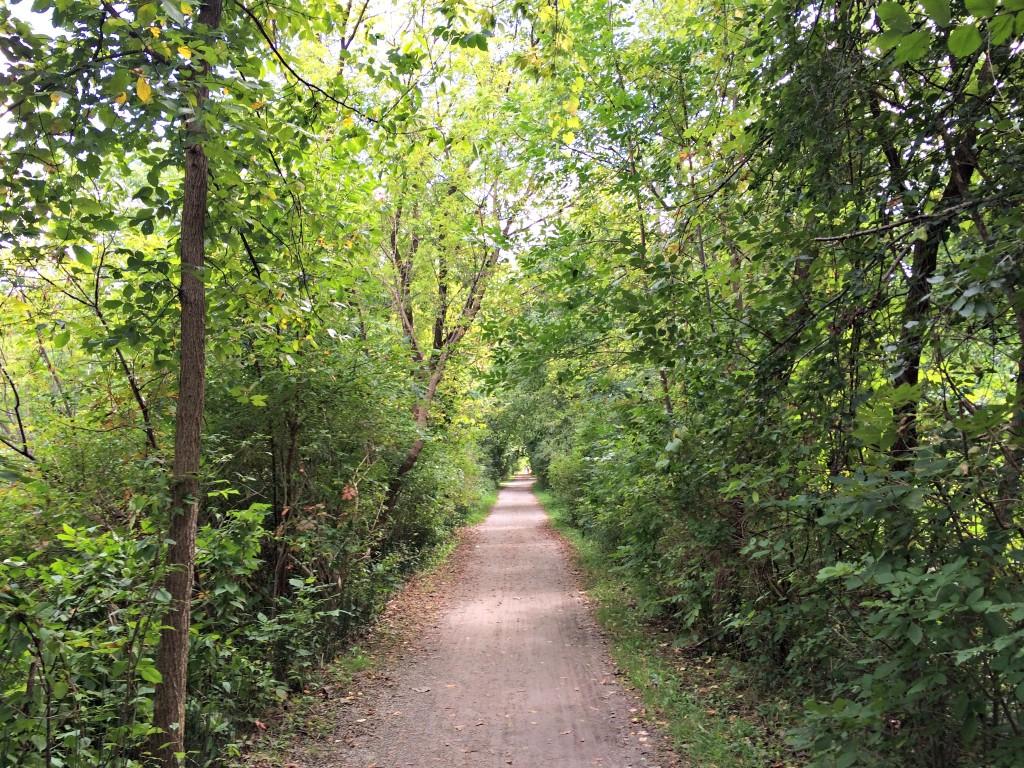 paint creek trail running