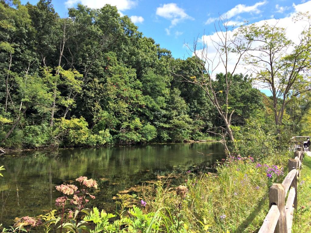 paint creek trail water