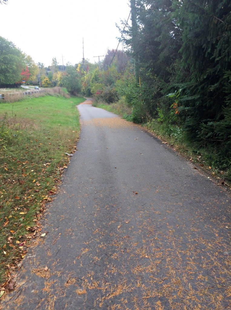 Running path 10 miles