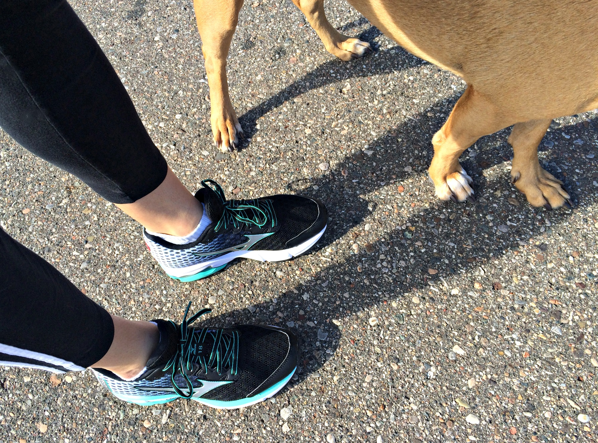Training Run in Mizuno WaveRunner18 sneakers Thursday