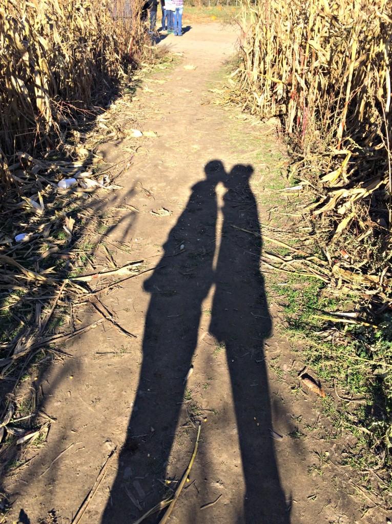 corn maze shadows