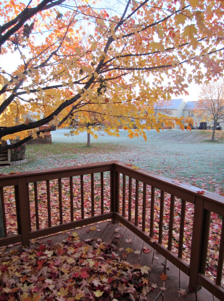 first frost of the fall season